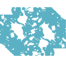 mlotif-pelage-bleu